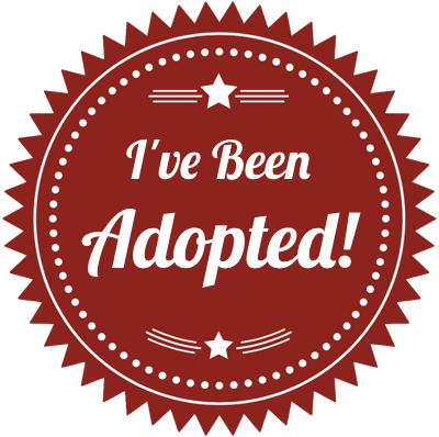 Badge ive been adopted